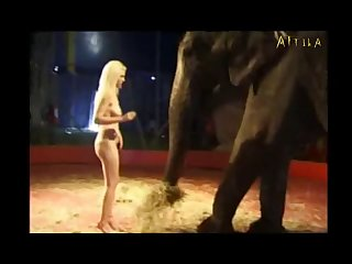 Milly Amorim 2795 3115 Elephant (part 15)