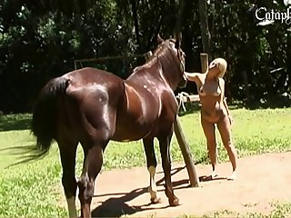 Staliion bitch Quick Cock In Tight Blondes Pussy Animal Porn